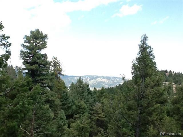 25553 Mountain Moss Court, Evergreen, CO 80439