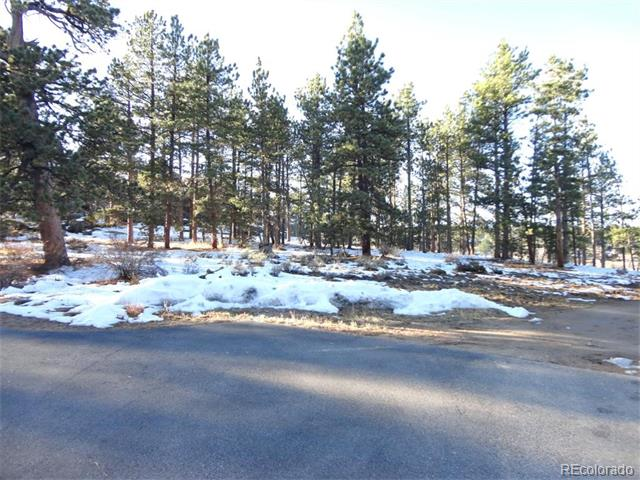 Lot 8 W Fox Acres Drive, Red Feather Lakes, CO 80545