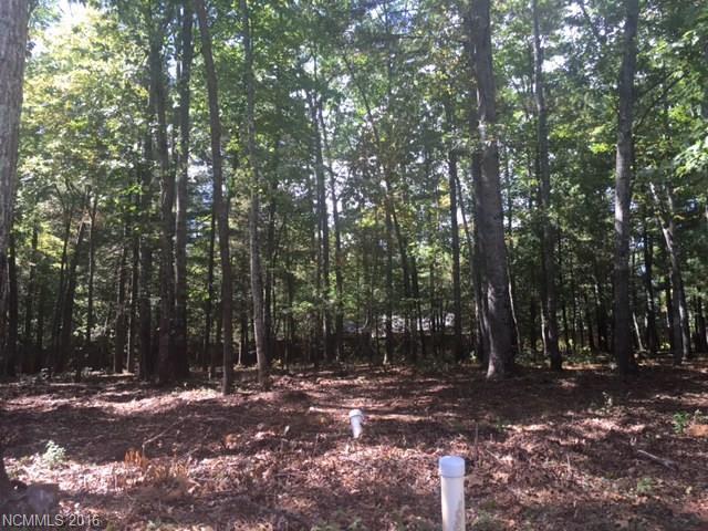79 Running Creek Trail 39, Arden, NC 28704