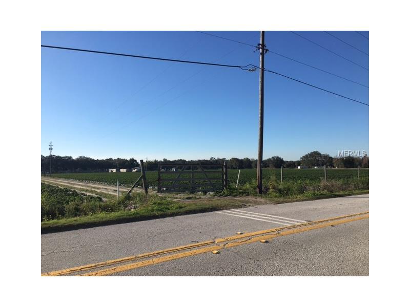 2334 MCINTOSH ROAD, DOVER, FL 33527