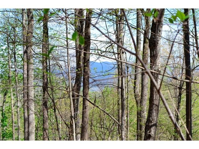 99999 Owenby Cove Road, Fairview, NC 28730