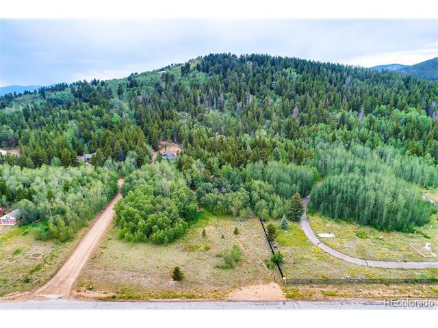233 Deer Circle, Black Hawk, CO 80422