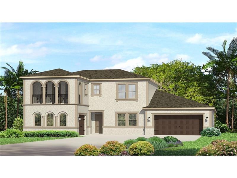 18315 LEAFMORE STREET, LUTZ, FL 33548
