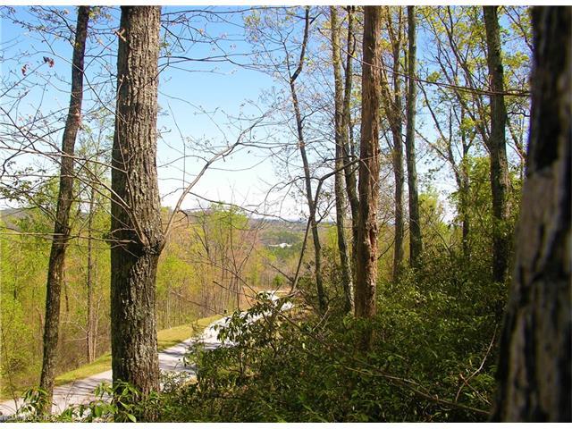 55 Bear Cliff Way 55, Lake Lure, NC 28746