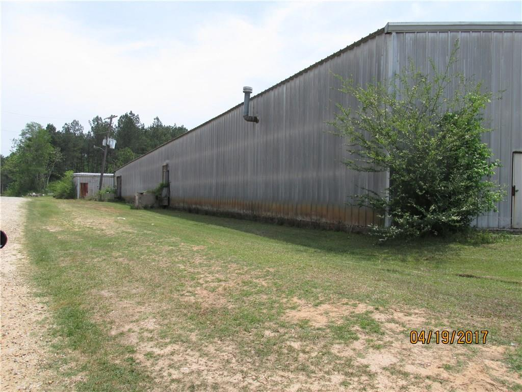 335 COUNTY ROAD 49 SE, HURTSBORO, AL 36860