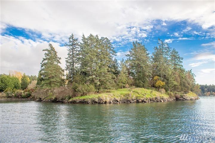340 Blind Bay Rd, Shaw Island, WA 98266