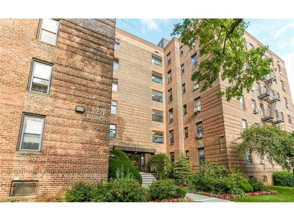 2271 Knapp Street 3A, Brooklyn, NY 11229