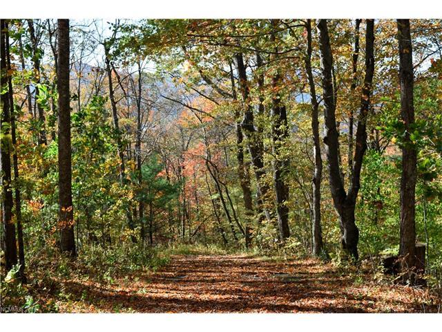 TBD Branch Road M, Spruce Pine, NC 28777