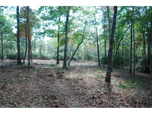 1915 White Tree Trail LOT 218, Arden, NC 28704