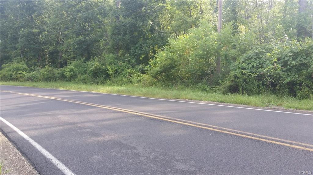 Mt Rutsen Road, Rhinebeck, NY 12572