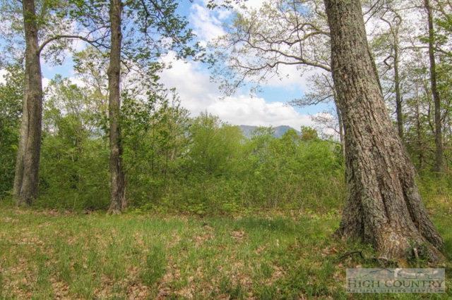 207 Dam Trail 2, Linville, NC 28646
