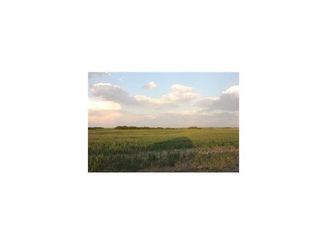 4.60 Acres W:4  R:24  T:24, S:12, Q: Southwest, Strathmore, AB T1P 1J6