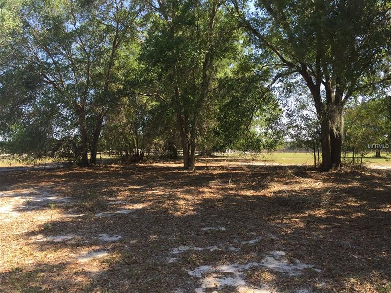 OLD MIMS ROAD, GENEVA, FL 32732
