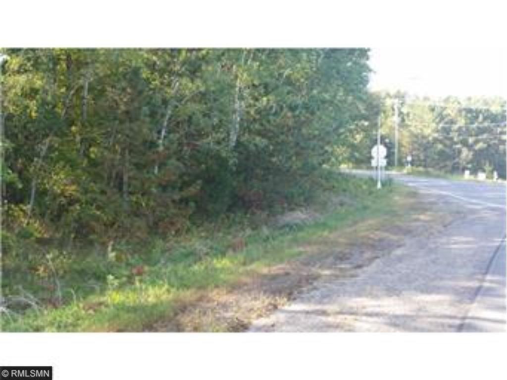 xxxxx Wild Mountain Road, Shafer Twp, MN 55084