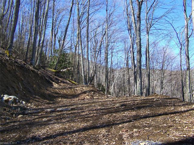 361A Serenity Mountain Road 361A, Waynesville, NC 28786