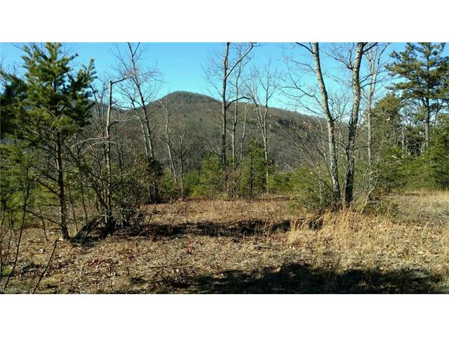 INCREDIBLE VIEWS FROM THIS LEVEL MOUNTAIN TOP LOT IN A GATED COMMUNITY. VERY EASY BUILD ON A SURPRISINGLY LEVEL PROPERTY.  NEAR AND DISTANT MOUNTAIN VIEWS, READY FOR YOUR NEW HOME.