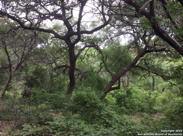 214 Sweetheart Creek (Pr 1701), Helotes, TX 78023
