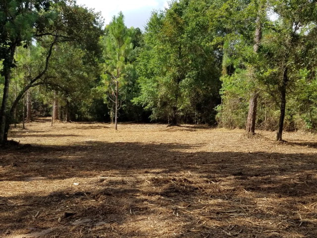Rosalia Avenue, Lillian, AL 36549