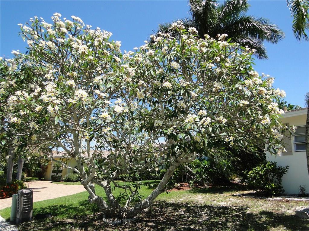 761 Rose CT, MARCO ISLAND, FL 34145