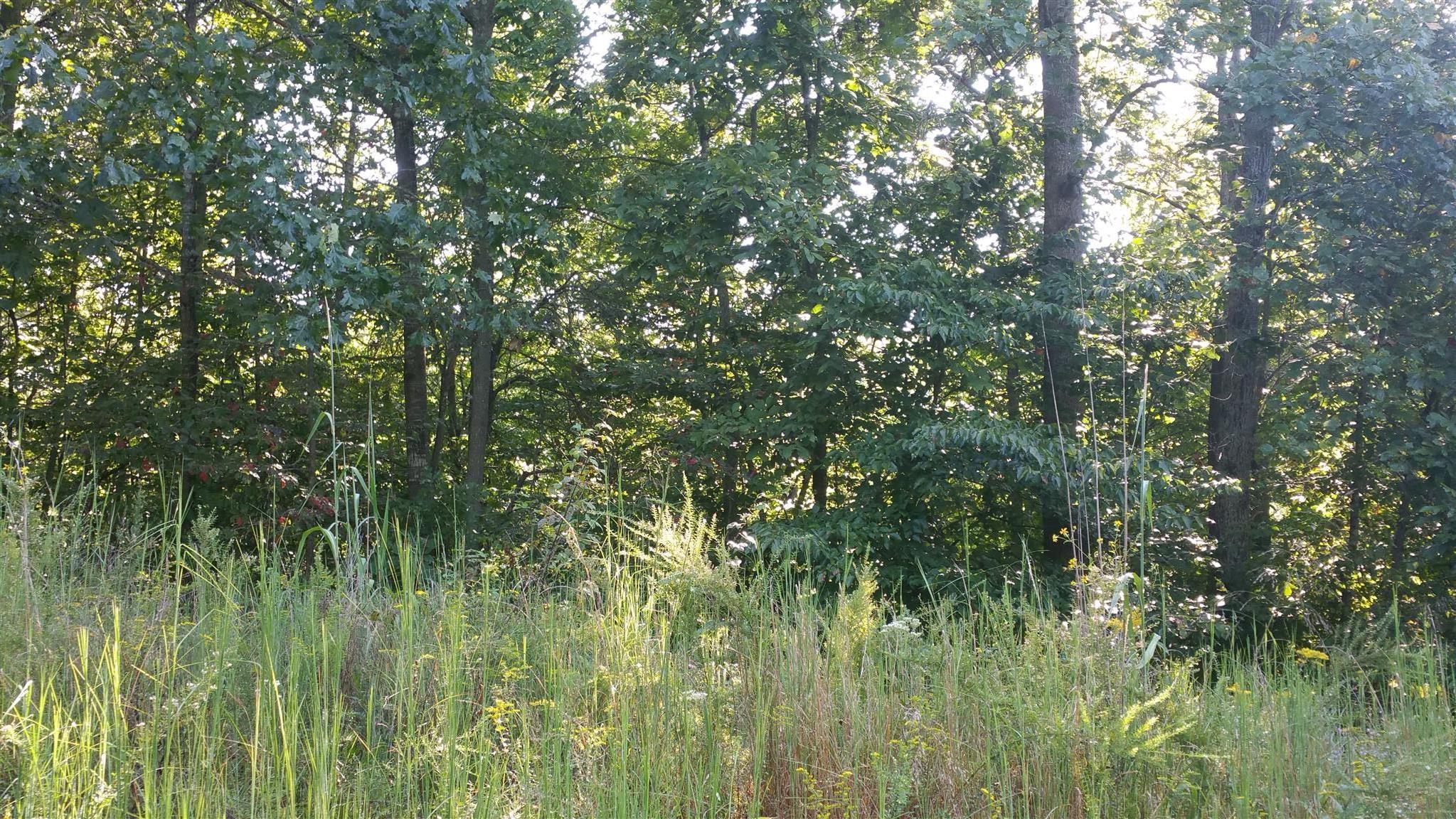 0 Wilkins Branch Rd, Franklin, TN 37064