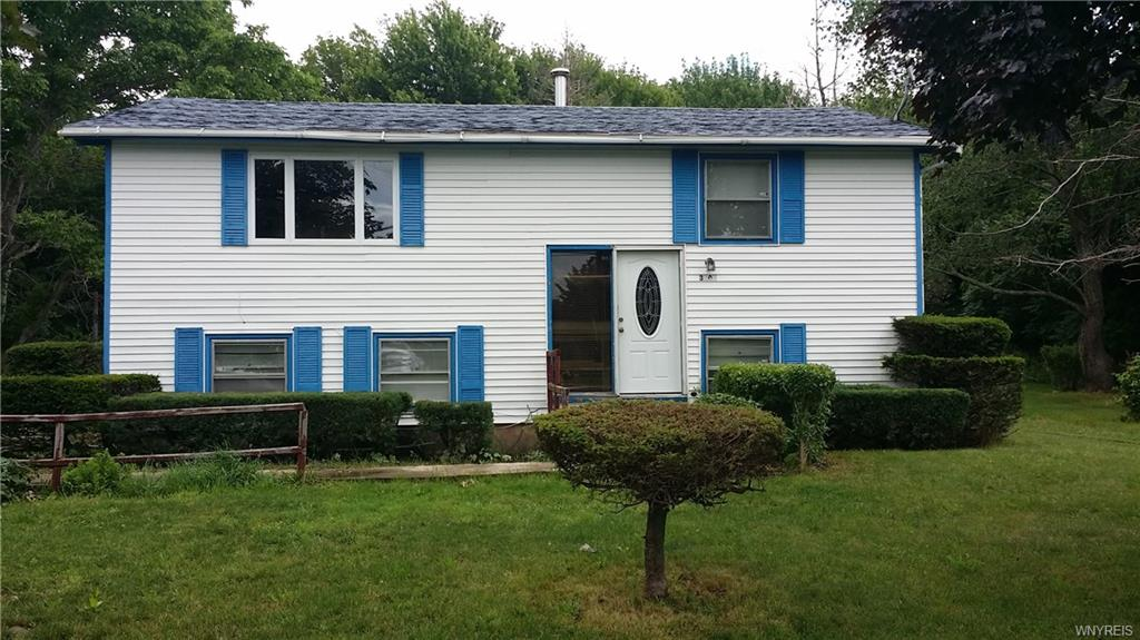 3707 Horan Road, Ridgeway, NY 14103