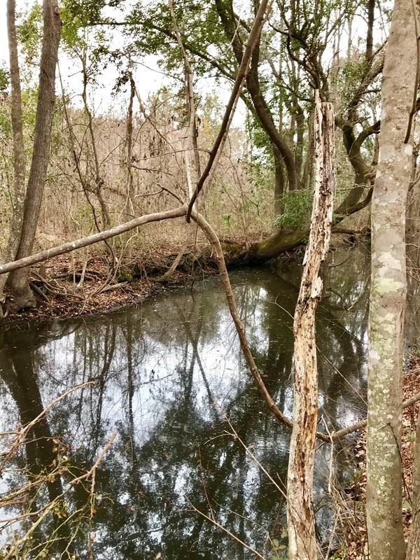 6 Greenwood Plantation, Darien, GA 31305
