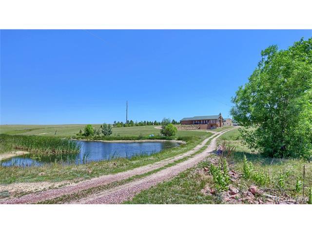 21526 Blue Springs View, Peyton, CO 80831