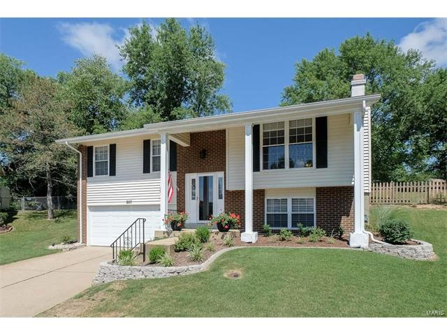 857 Village Meadow Drive, Ballwin, MO 63021