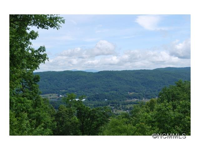 1A Reserve Road 1a, Pisgah Forest, NC 28768