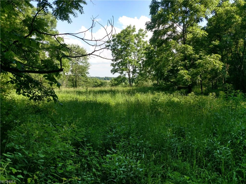 Township Road 33, Warsaw, OH 43844