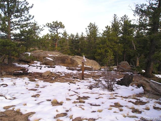 2900 Fox Acres Drive, Red Feather Lakes, CO 80545