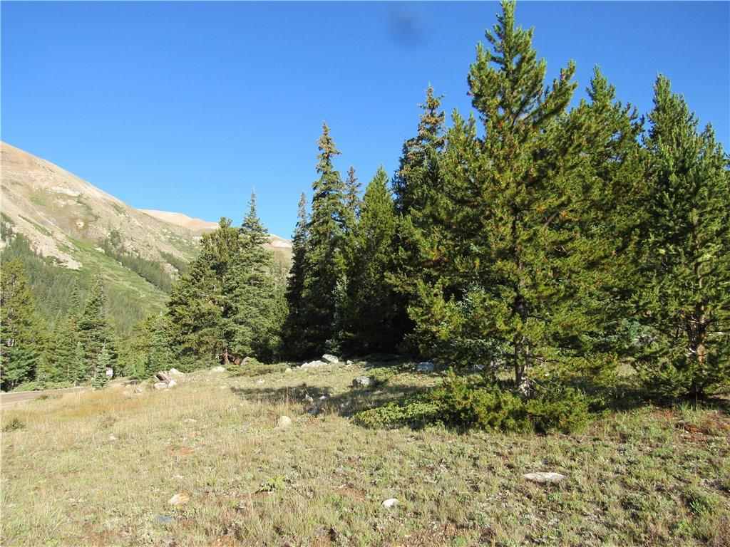 TBD County Road 8, ALMA, CO 80420