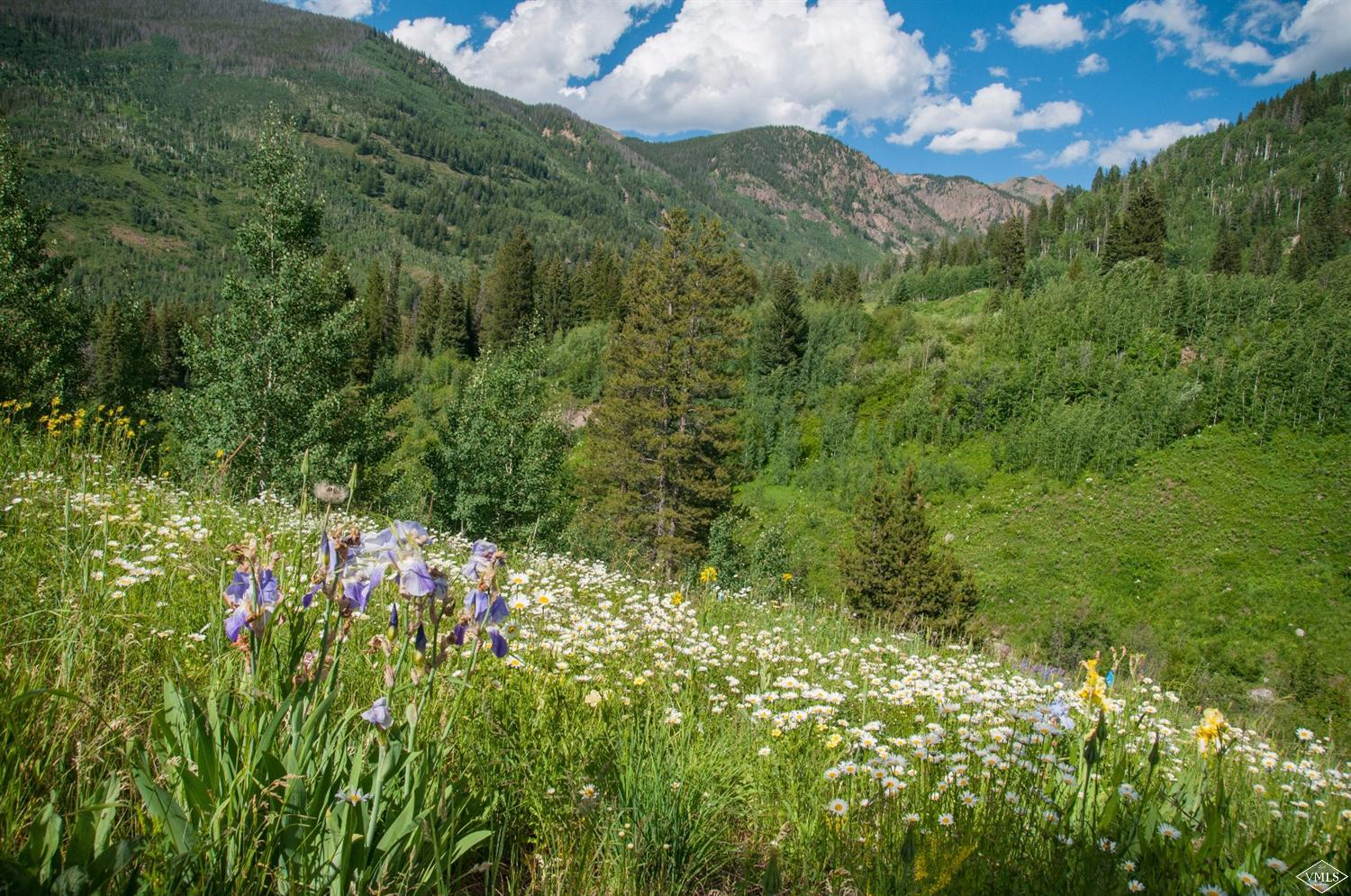 5184 Main Gore Drive S, Vail, CO 81657