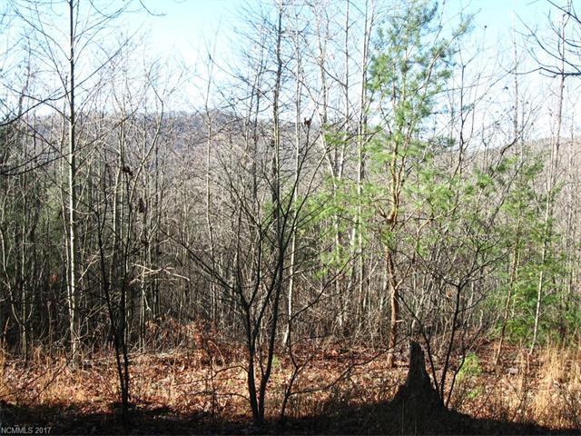 629 Pine Cone Trail, Marshall, NC 28753