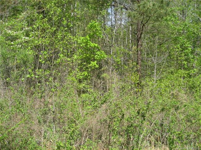 Lot 13 Short Cedar Trail 13, Alexis, NC 28006
