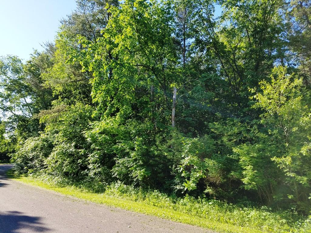 Lot 50 821st Ave, Tainter Twp, WI 54730