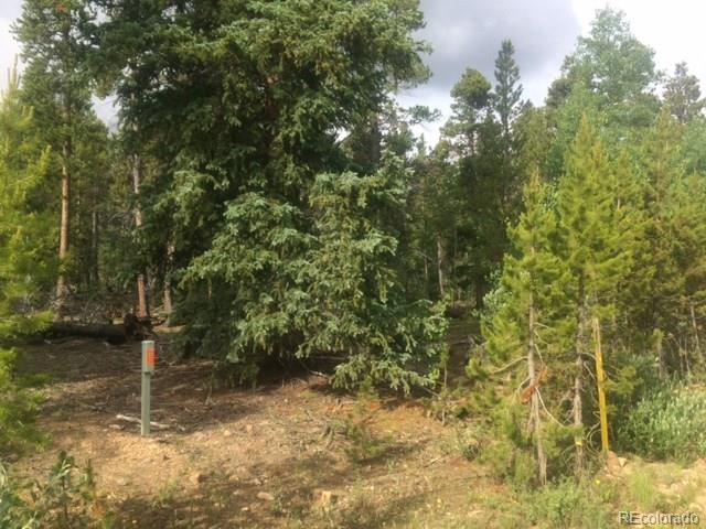 beautiful treed site * gentle level land with Views* electricity Needs well and septic