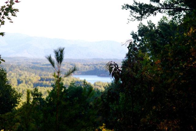 1690 Pisgah Preserve Drive, Nebo, NC 28761