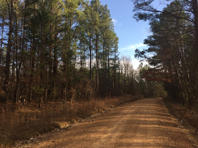 1201 Coleman Rd, Other, MS 11111