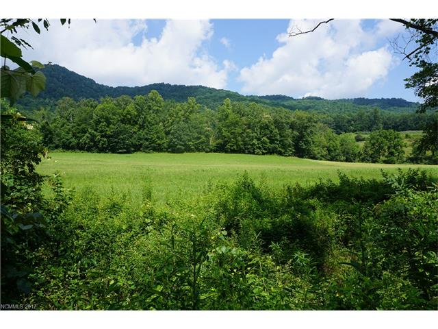9999 South Turkey Creek Road, Leicester, NC 28748