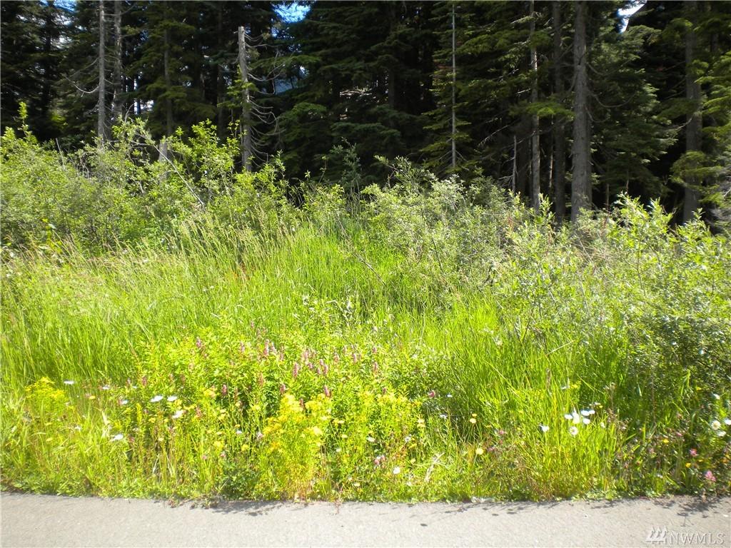 98 Guye Peak Lane, Snoqualmie Pass, WA 98068