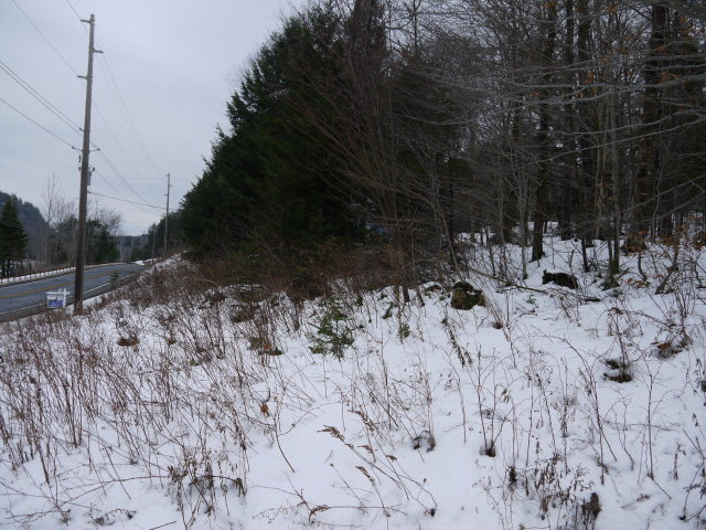 Palisades Rd East, Old Forge, NY 13420
