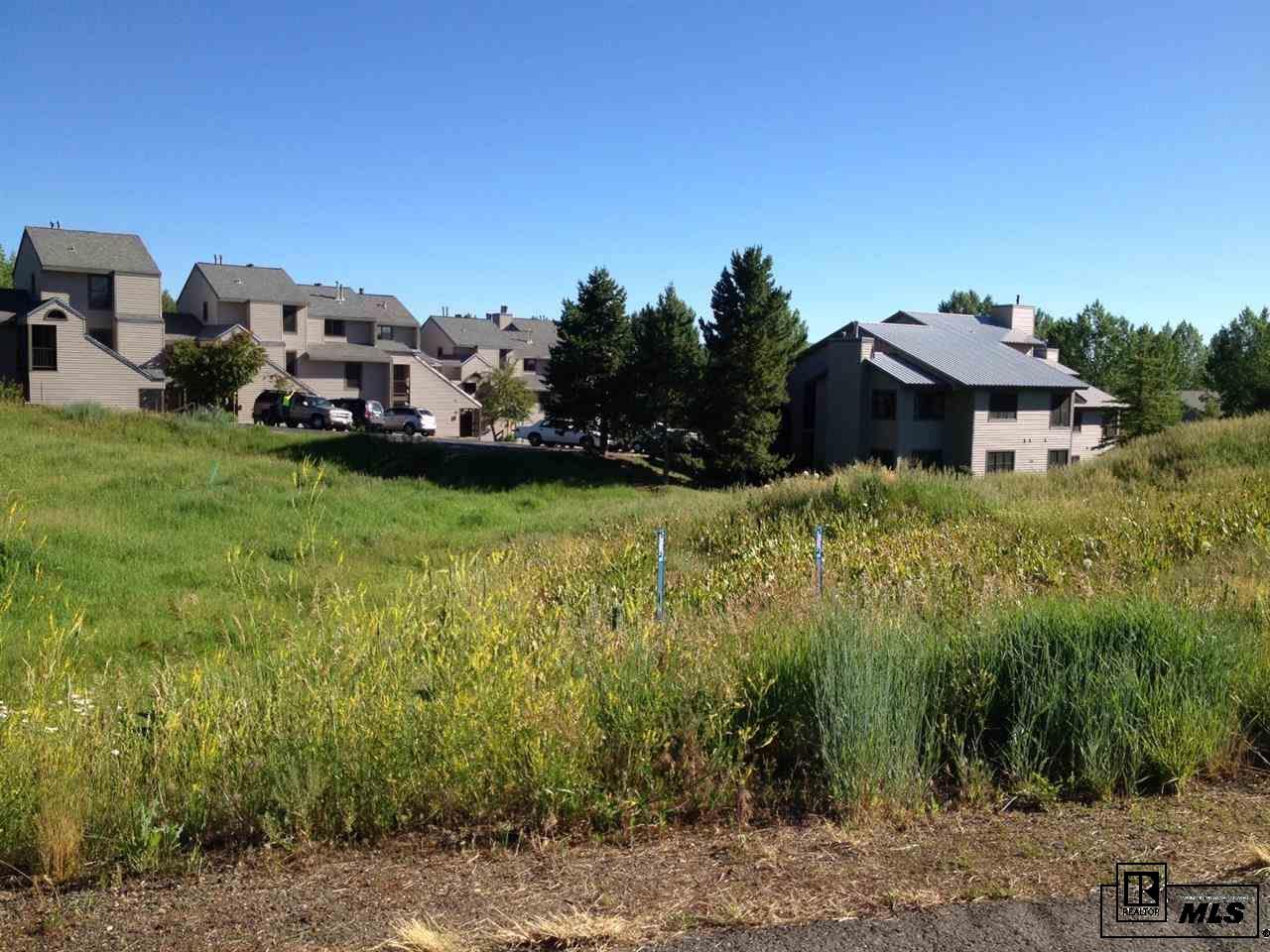 3309 & 3311 Snowflake Circle, Steamboat Springs, CO 80487