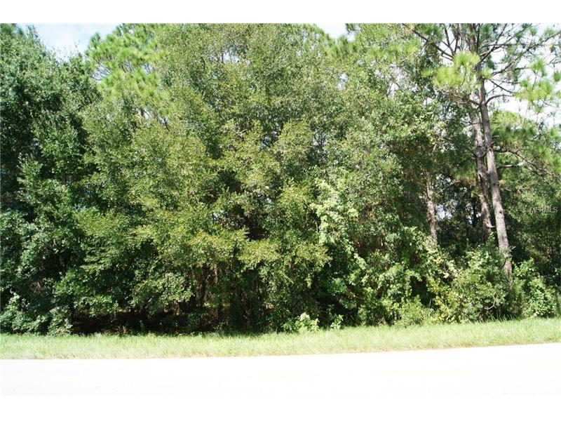 2415 N HIGHLANDS BOULEVARD, AVON PARK, FL 33825