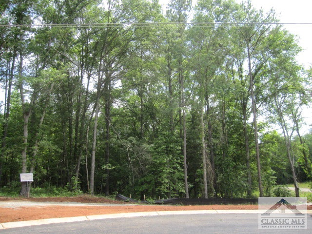 2402 Downs Creek Drive (Lot 3B), Athens, GA 30606