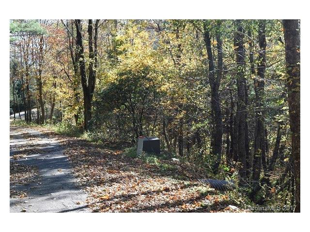 TBD Branch Road I, Spruce Pine, NC 28777