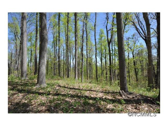 Beautiful 1.38 acre estate size building site with gentle topography located in Historic Flat Rock, Kenmure Country Club,Convenient to Golf Course, pool, and fitness.  Great location in an area of fine homes, has seasonal views and year around view potential.