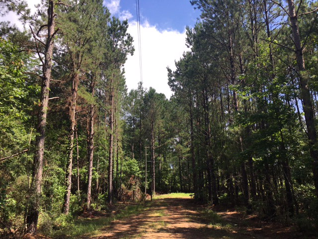 4695-A Blalock Rd, Gloster, MS 39638