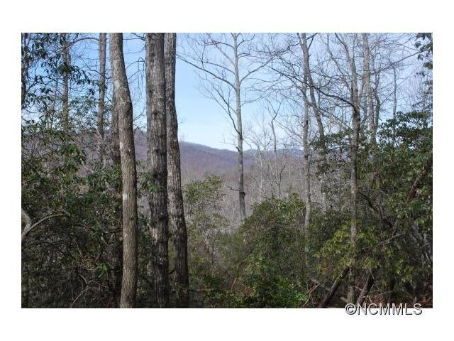 Lot 1 Hollydale 1, Pisgah Forest, NC 28768