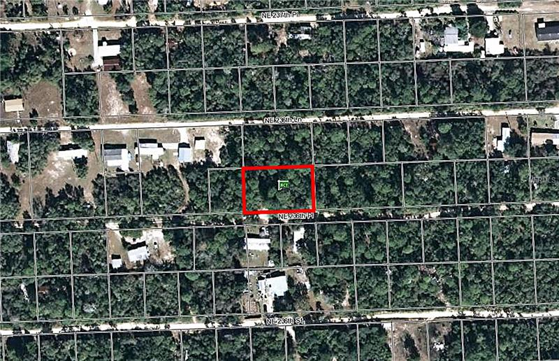 15601 NE 236TH PLACE, FORT MC COY, FL 32134
